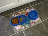 Food bowls and placemat