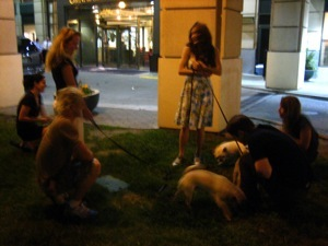 The dogs of Spamalot, and their owners, outside the Omni.