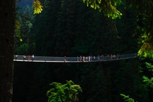 Capilano Suspension Bridge - 250 feet high, 450 feet long