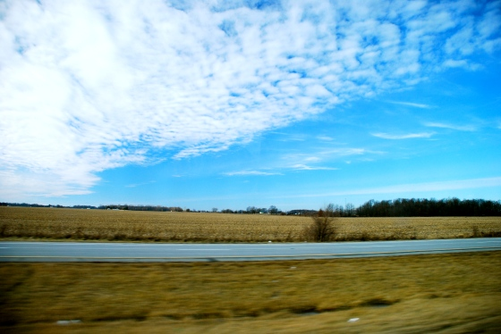 The flat lands of Indiana speed by my window on the bus