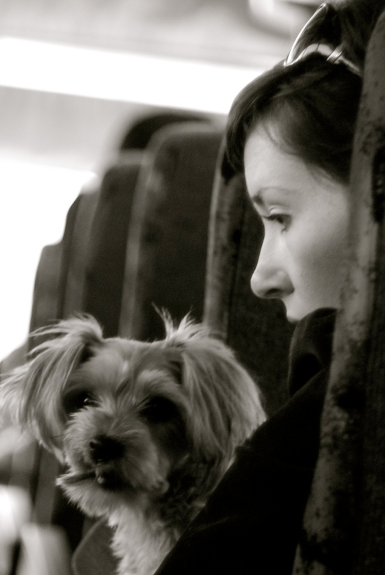 Jen and her dog, Bella, on the bus to Wilmington