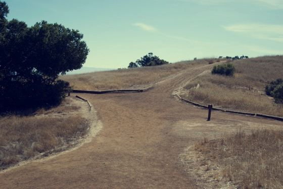 Crossing of trails at Rancho San Antonio
